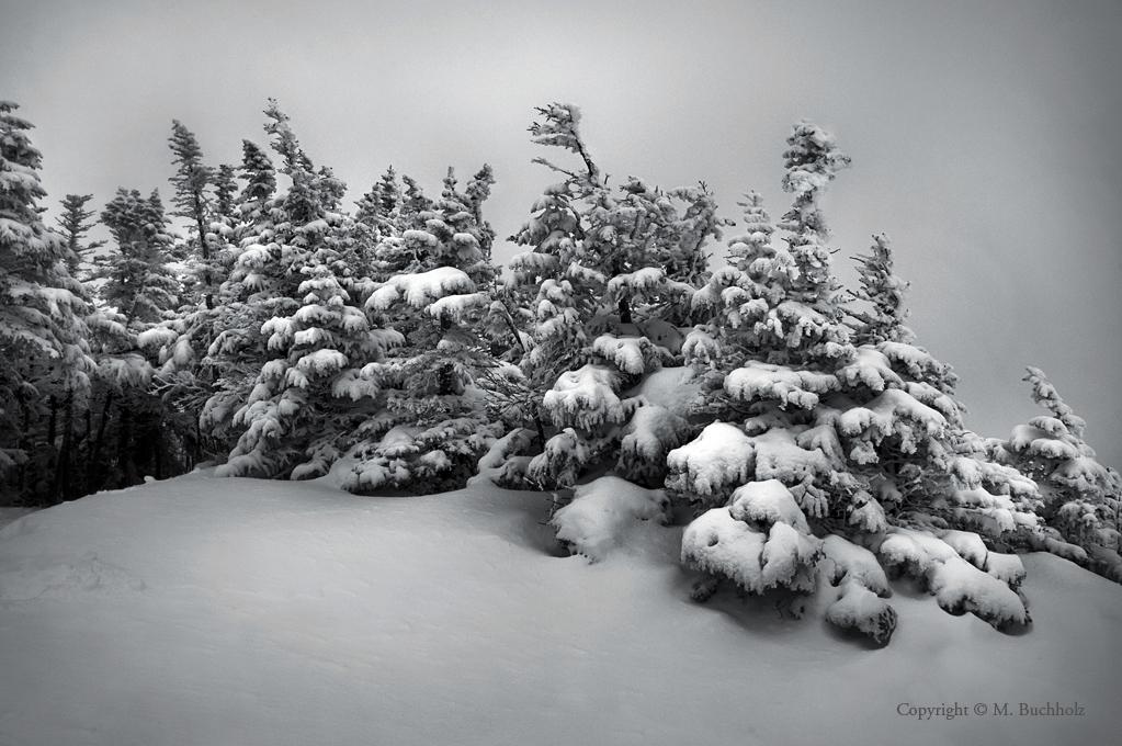 Osceolas Snow-Covered Summit