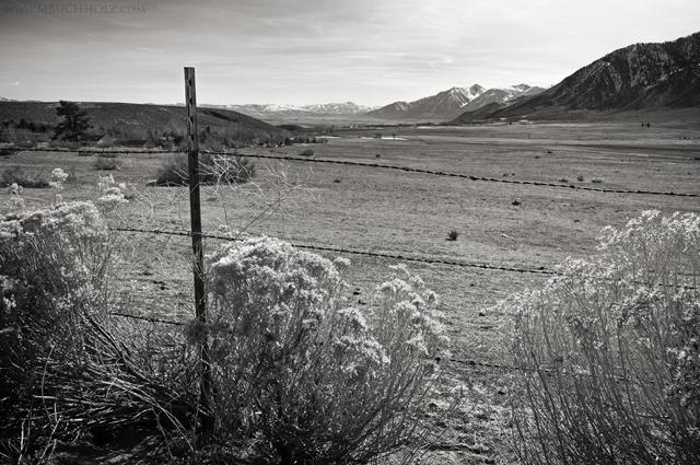 Alpine View, Carson City, Nevada