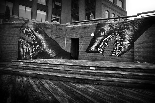 Street Art by Shark Toof; Portsmouth, NH