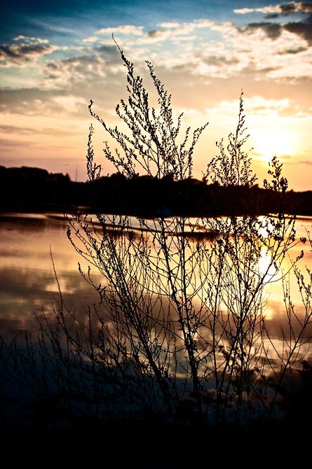 Harbor Sunset; Odiorne State Park, Rye, NH