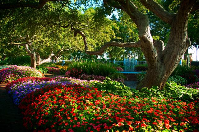 Flower Garden; Prescott Park, Portsmouth, NH