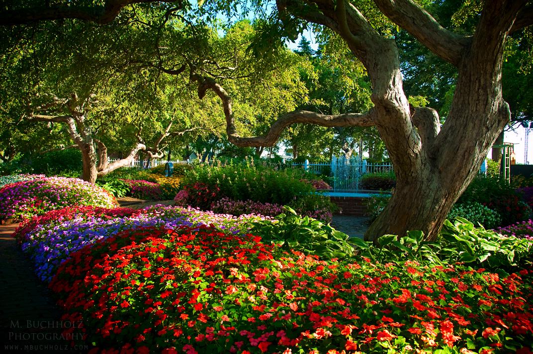 Beautiful Parks Photography | M. Buchholz