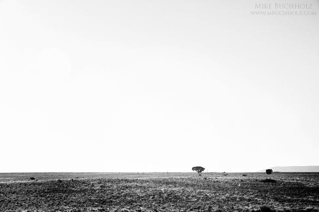 Lone Tree, Utah