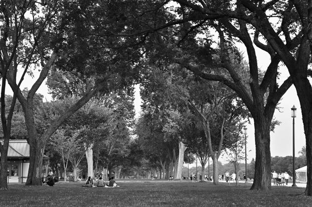 Picnic, National Mall, Washington, D.C.