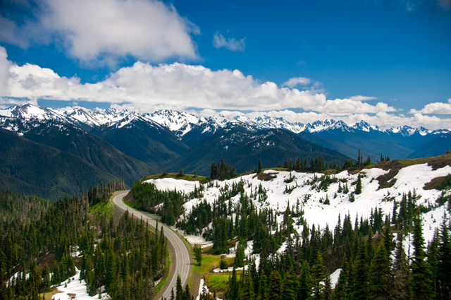 Windy Road, Hurricane Ridge; Olympic National Park, Washington