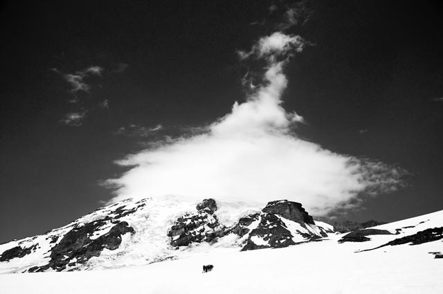Muir Snowfield Approach; Mt. Rainier, Washington