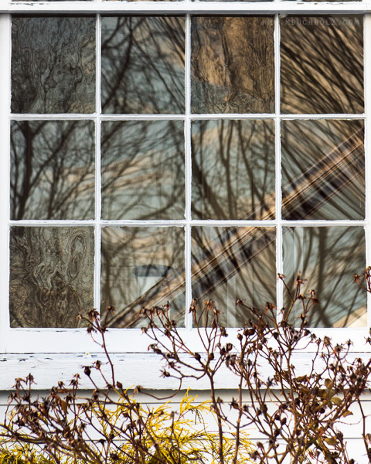 Panels, Window Reflections
