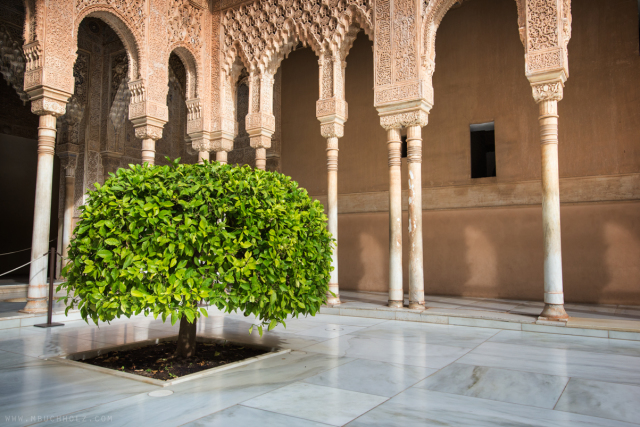 Court of the Lions in Nasrid Palace, Alhambra; Granada, Spain
