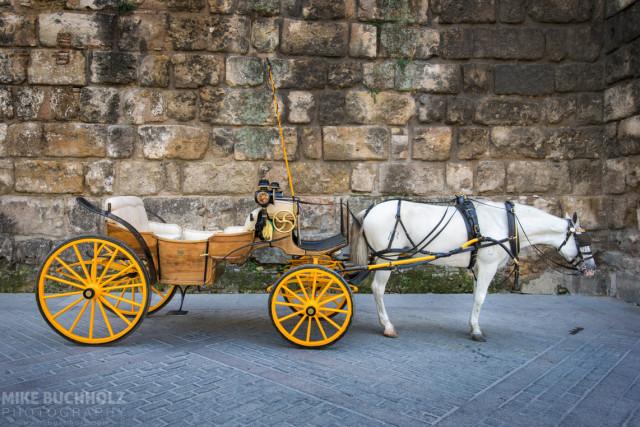 Coffee Break; Horse-Drawn Carriage, Sevilla, Spain