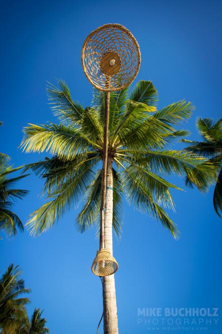 Palm Tree Lamp Posts; Palawan, Philippines