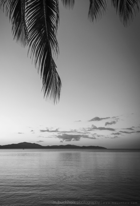In the Shade of a Palm; Palawan, Philippines