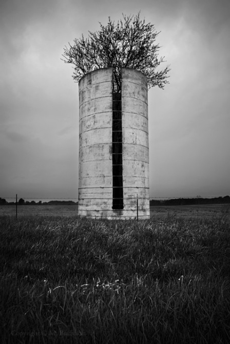 Feed Silo; Missouri