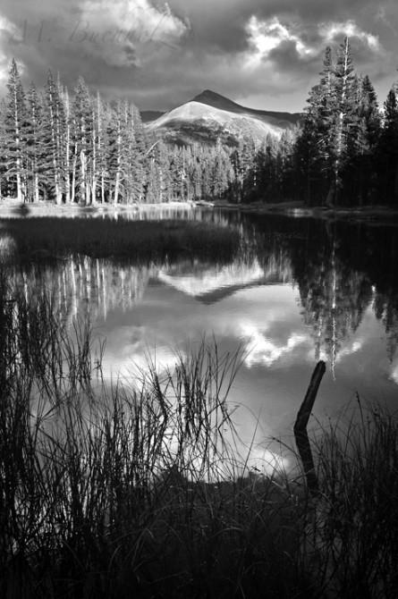 Yosemite National Park; California