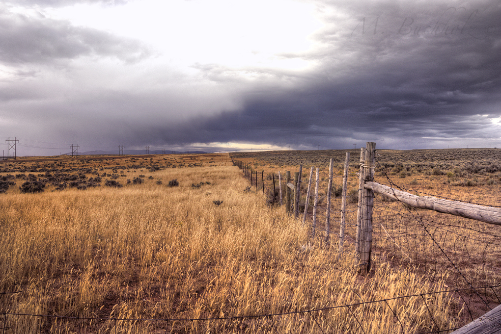 Fields of Afton, Wyoming