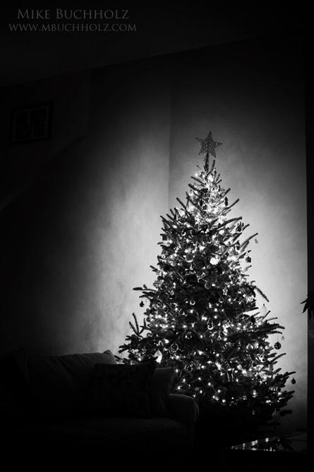 Cornered; Christmas Tree